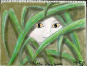 watcher-from-the-grass002.jpg
